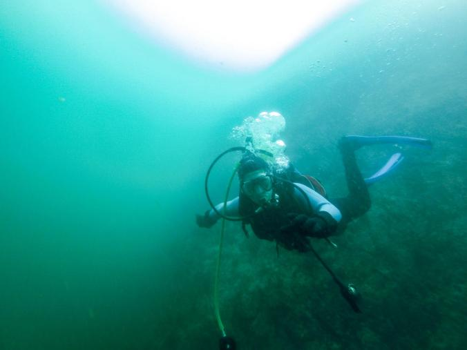 scuba-diving-padi