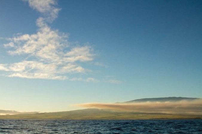 vic-hawaii