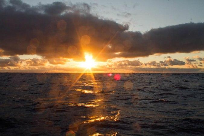 vic-hawaii-jul3-13